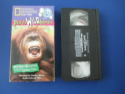THE WIGGLES WIGGLE Time VHS used 999 PicClick