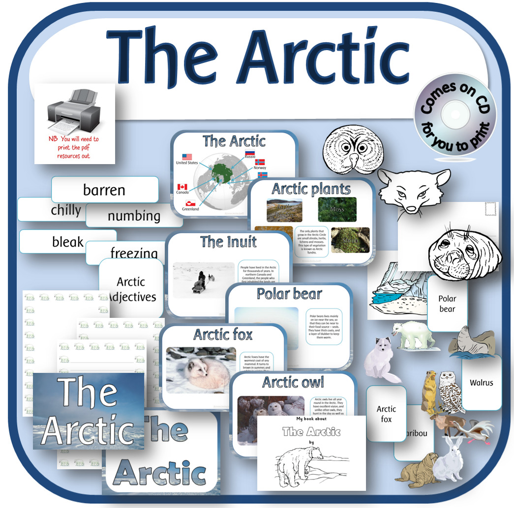 The Arctic Ocean Amp Animals Teaching Resources Display Activities Eyfs Ks1 On Cd