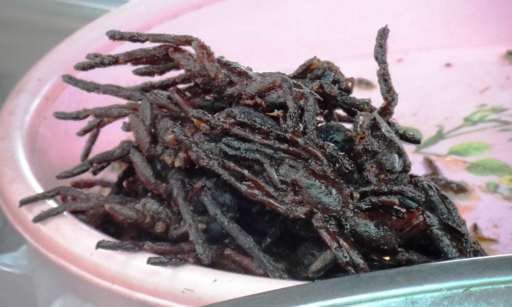 Ragni fritti
