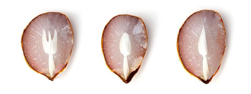 Le forme che si trovano nei semi dei cachi