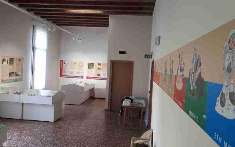 Illustrazioni e disegni per l'esposizione archeologica permanente presso la biblioteca di Thiene (VI)