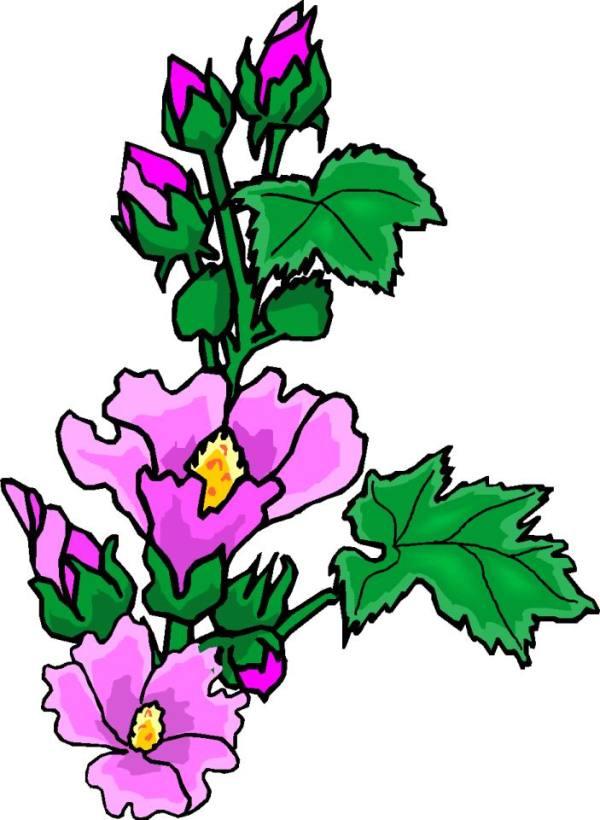 clip art - flowers 527743