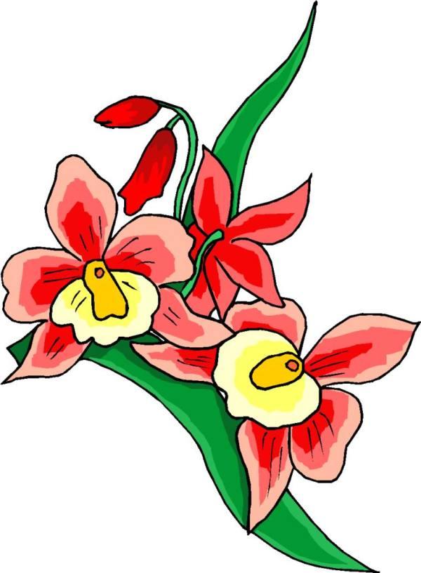 clip art - flowers 558351