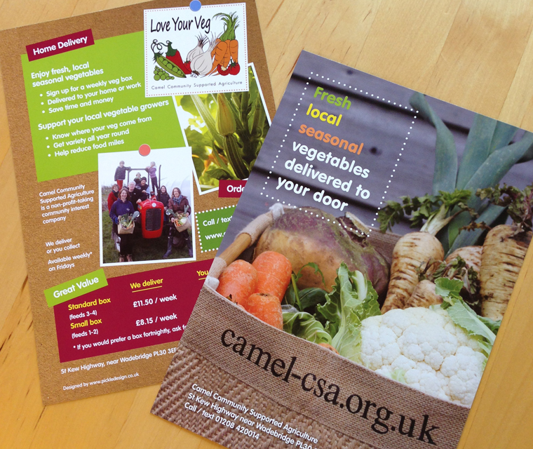 A5 flyer design for Camel CSA