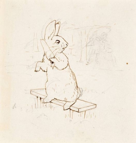 Beatrix Potter's pencil drawings of a rabbit for her story books