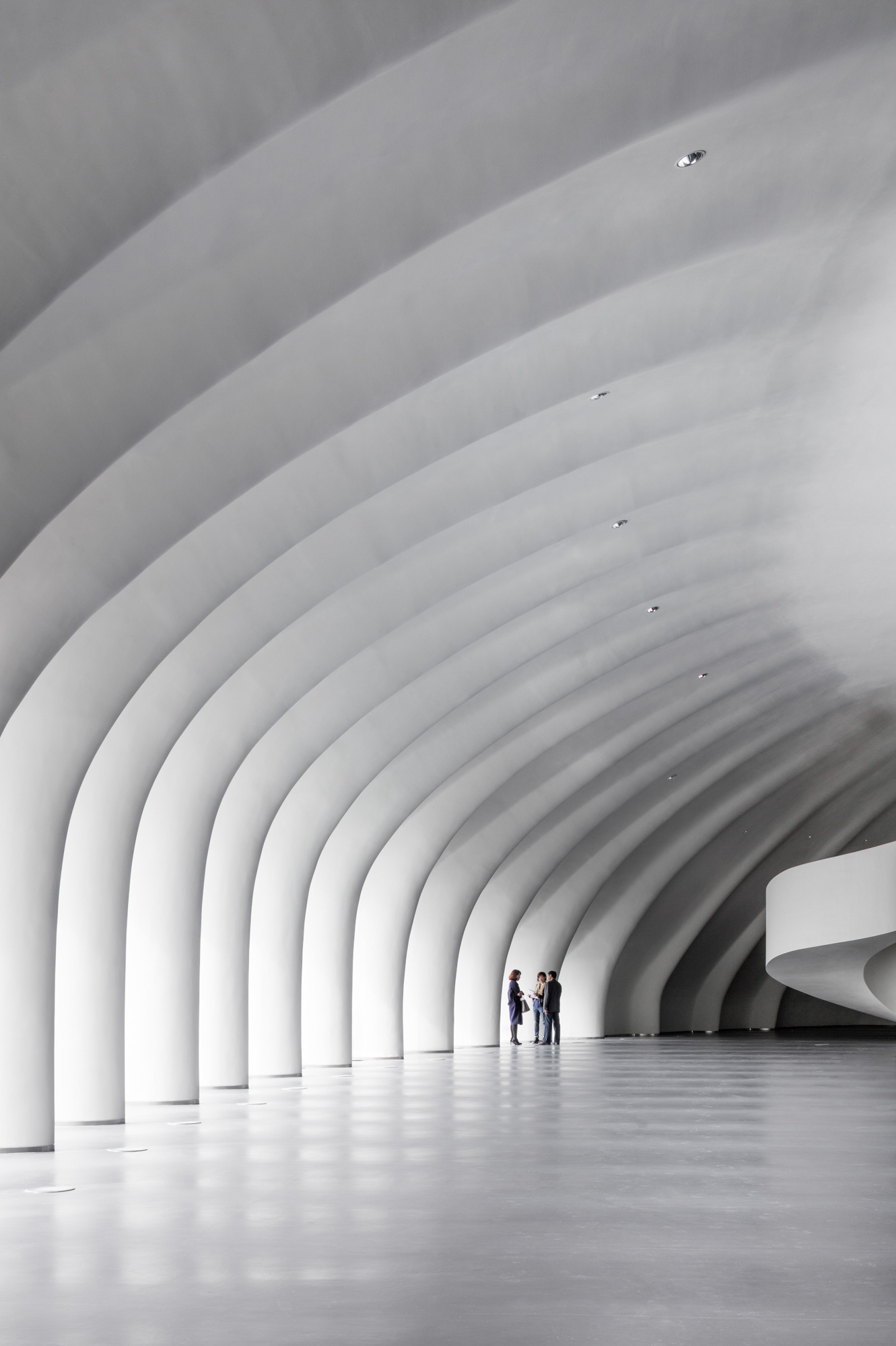 White ribbed ceiling in this impressive architecture