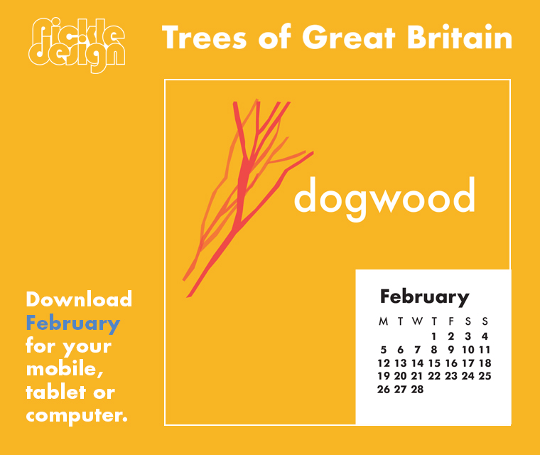 Download the free February retro calendar of illustrated Dogwood one of our Great British trees for your desktop, mobile or tablet