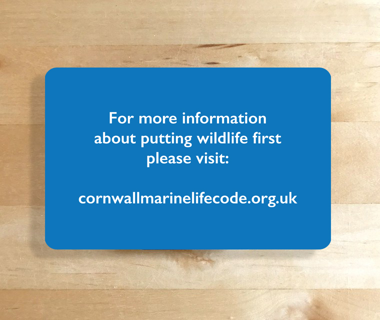 Cornwall Marine and Coastal Code pocket map