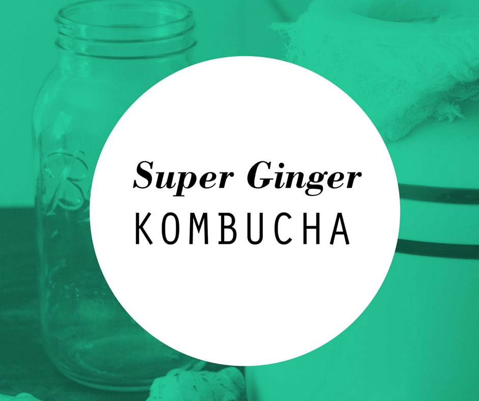 super ginger kombucha