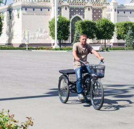 Best Adult Tricycle: Choosing the Best Hauler for Your Use