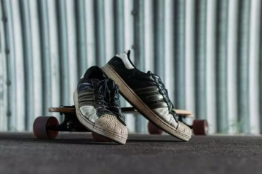 Best Shoes for Longboarding | Top 8 Reviewed