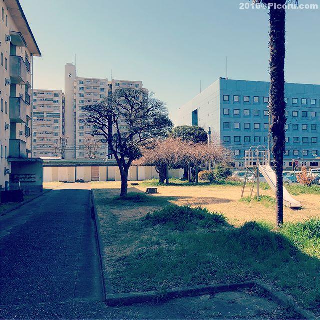 昭和なアパート