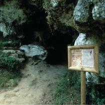 Cueva-del-Buxu