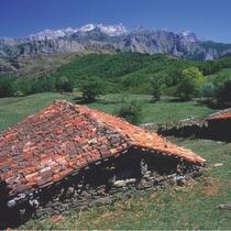Parque-Natural-de-Ponga