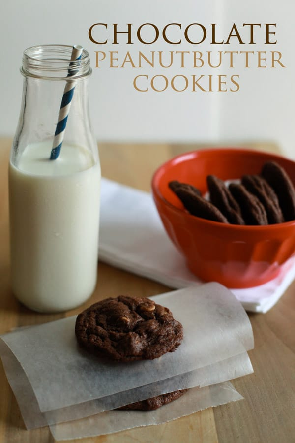 01sfw chocolate peanut butter cookies