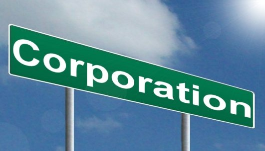 Image result for corporation
