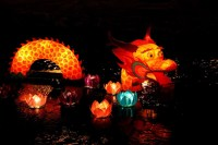 25+ Mind-Blowing Chinese Lantern Festival Celebrations ...