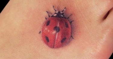 Bug Tattoo