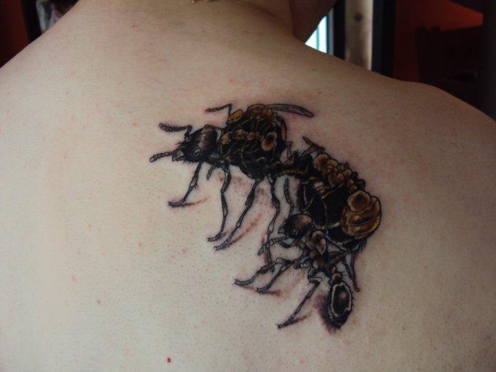 Ant Tattoos Idea Design for Tattoos Lover 16