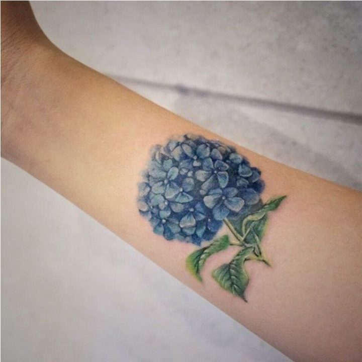 Hydrangea Tattoos And Hydrangea Tattoo For Boys & Girls 04