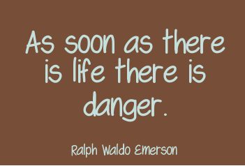Incredible Danger Quotes
