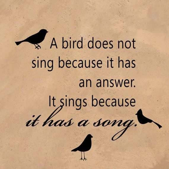 Birds Quotes Images 05