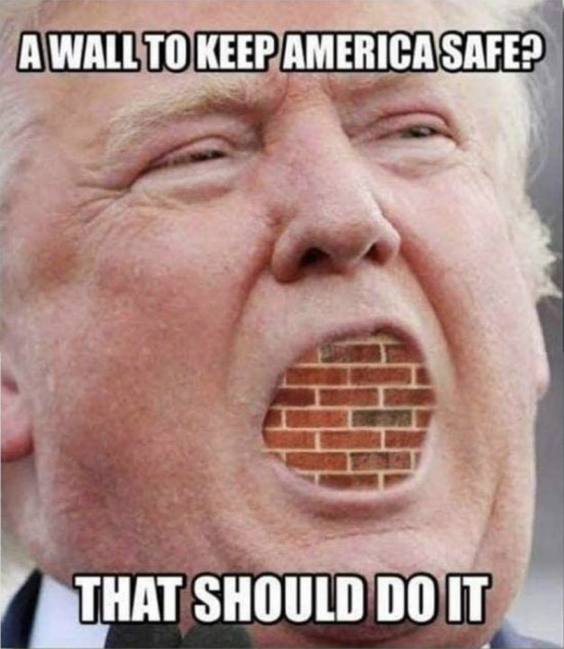 30 Funny Donald Trump Memes Images & Pictures | PICSMINE