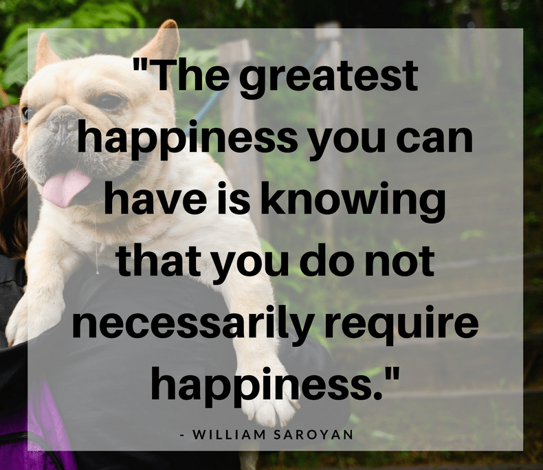 Happiness Quotes the greatest happiness you can have