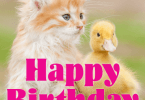Cute Friend Birthday Card Wishes 03