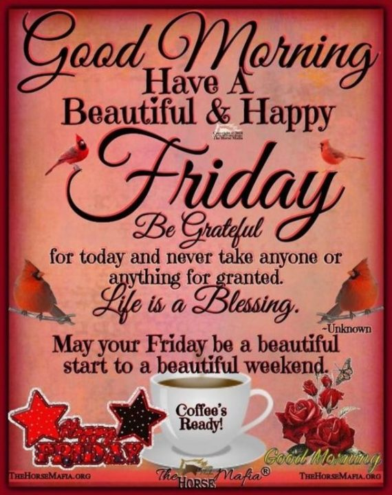 good morning have a beautiful & happy friday be grateful
