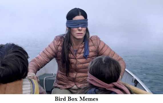 bird box funny movie memes