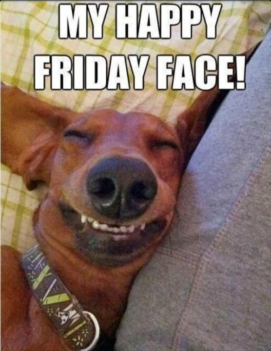 happy friday images funny my happy friday face!