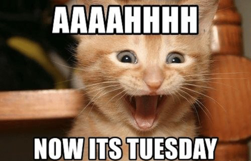 AAAAHHHHH Now Its Tuesday