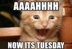 AAAAHHHHH Now Its Tuesday
