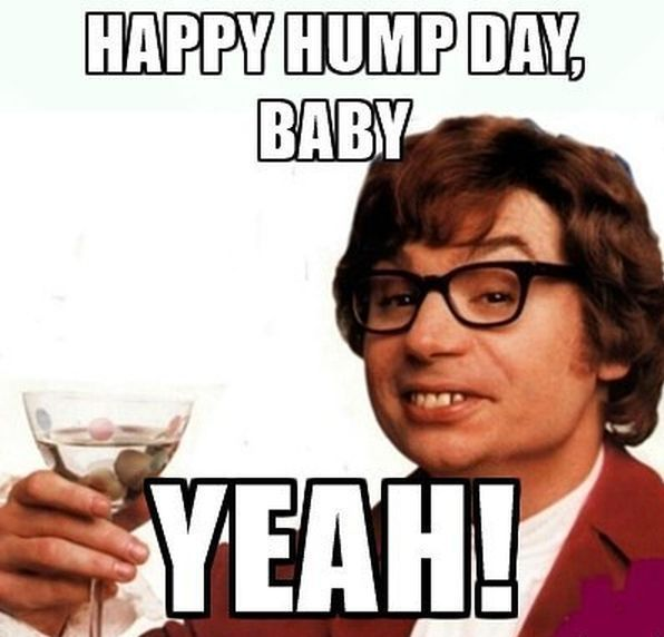 Awesome Hump Day Memes With A Great Face