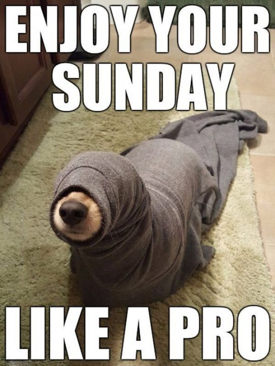 Enjoy Your Sunday Like A Pro
