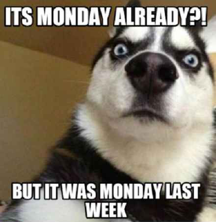 Its Monday Already But It Was Monday Last Week