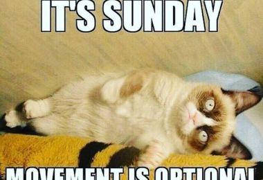 Its Sunday Movements Is Optional Sunday Night Meme