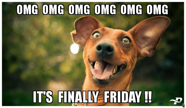 Omg Omg Omg Omg Omg Omg Its Finally Friday