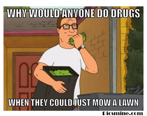 hank hill quotes why would anyone do drugs when they could jusy mow a lawn