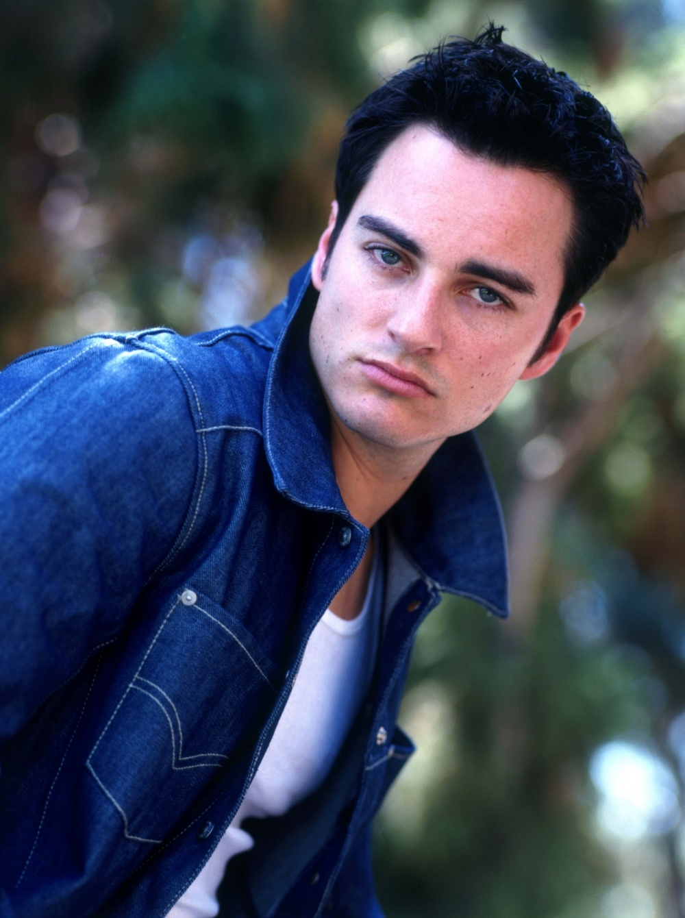 Pictures of Kerr Smith  Pictures Of Celebrities