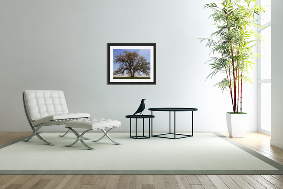 wishing chair photo frame child size rocking cushions the tree g stevenson canvas picture printing