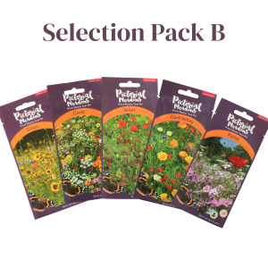 Selection Pack B