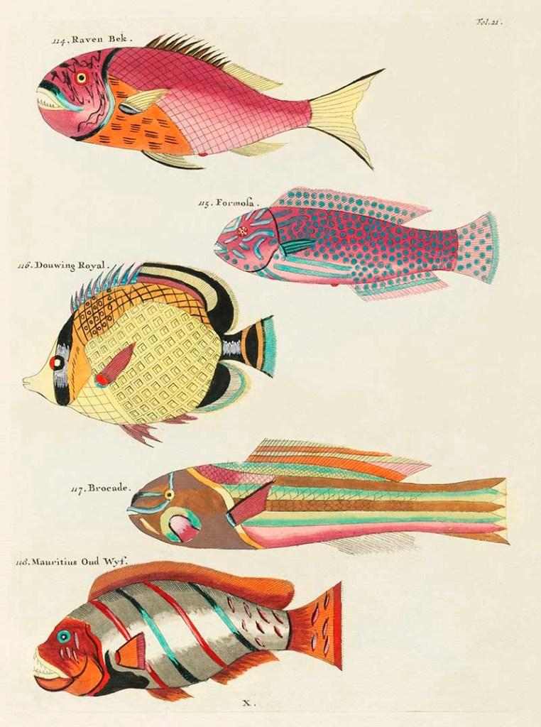 Louis Renard antique fish 114-118