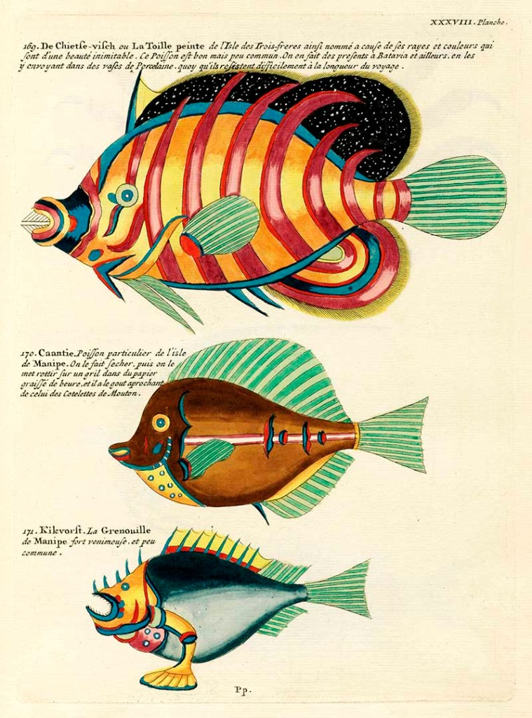 Antique fantastical fish illustrations