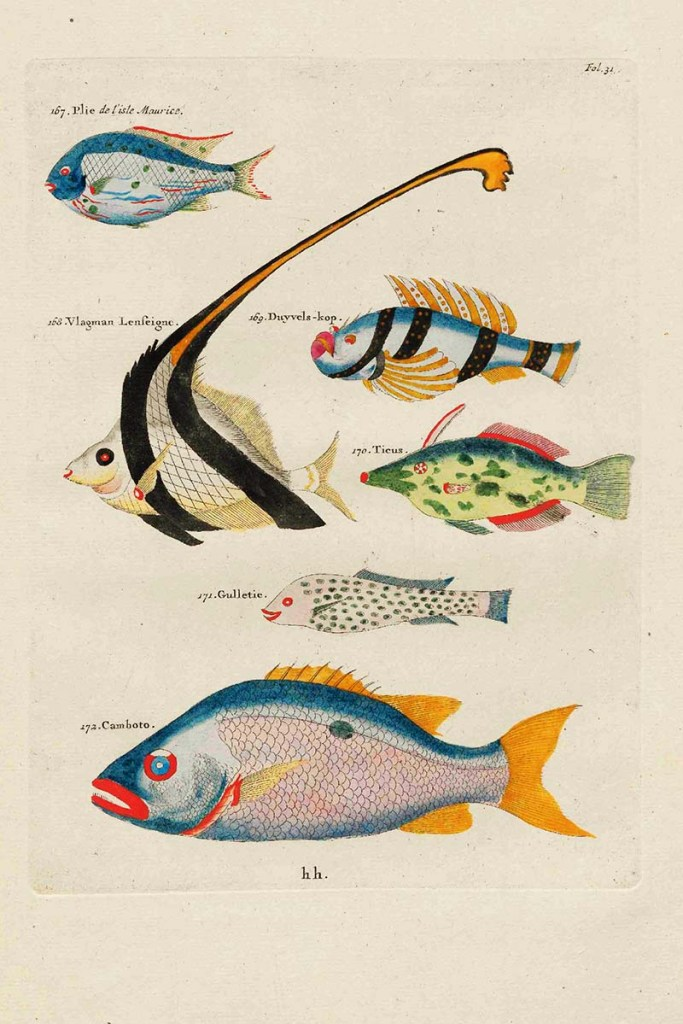 Fantastical Fish Paintings of Louis Renard free to download
