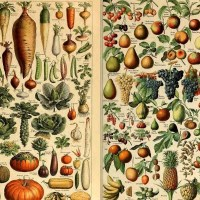 Free Vintage Fruit and Vegetable Prints by Adolphe Millot