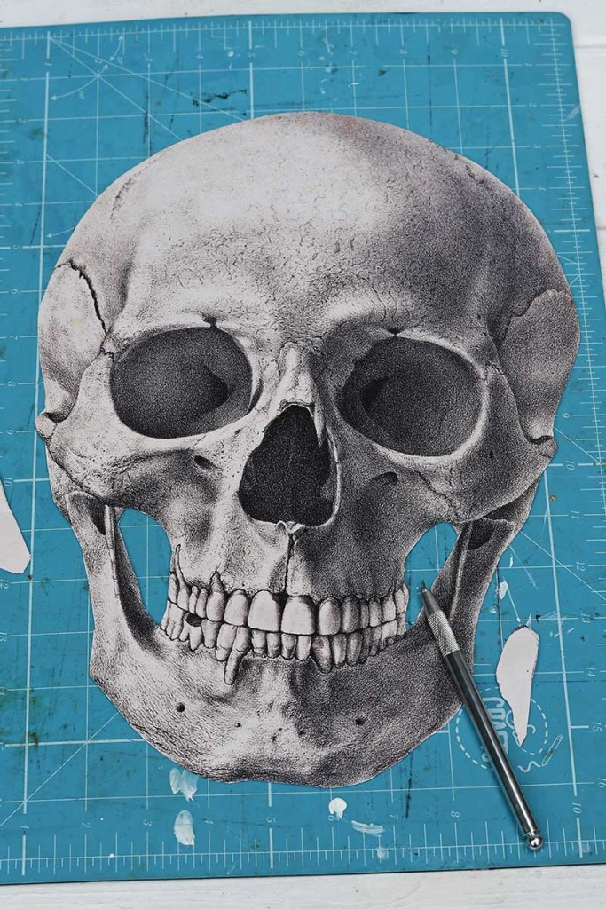 cutting out vintage skull