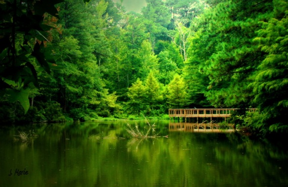 """country pond"" taken by J. Marie"