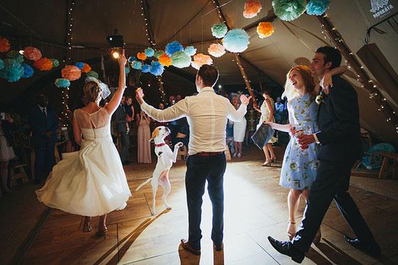 wedding reception dancing dog